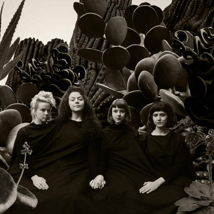 succulentslandless Singers Monaghan
